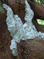 Hives are now thriving within a grand old Cedar tree on Camano Island.  Created using reclaimed plastic bottles,  stitched together with staples and stainless steel pins. By Barbara De Pirro