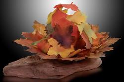 Autumn Bower, glass 10 x 12 x 10 Annette Tamm $1800